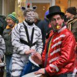 Sambatida, Zebras und Zirkus